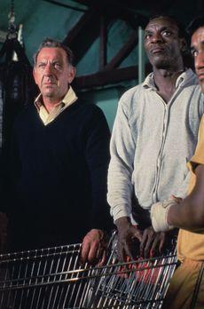 Quincy - Ausgerechnet Ben Naday (Moses Gunn, r.), ein langjähriger Freund von...