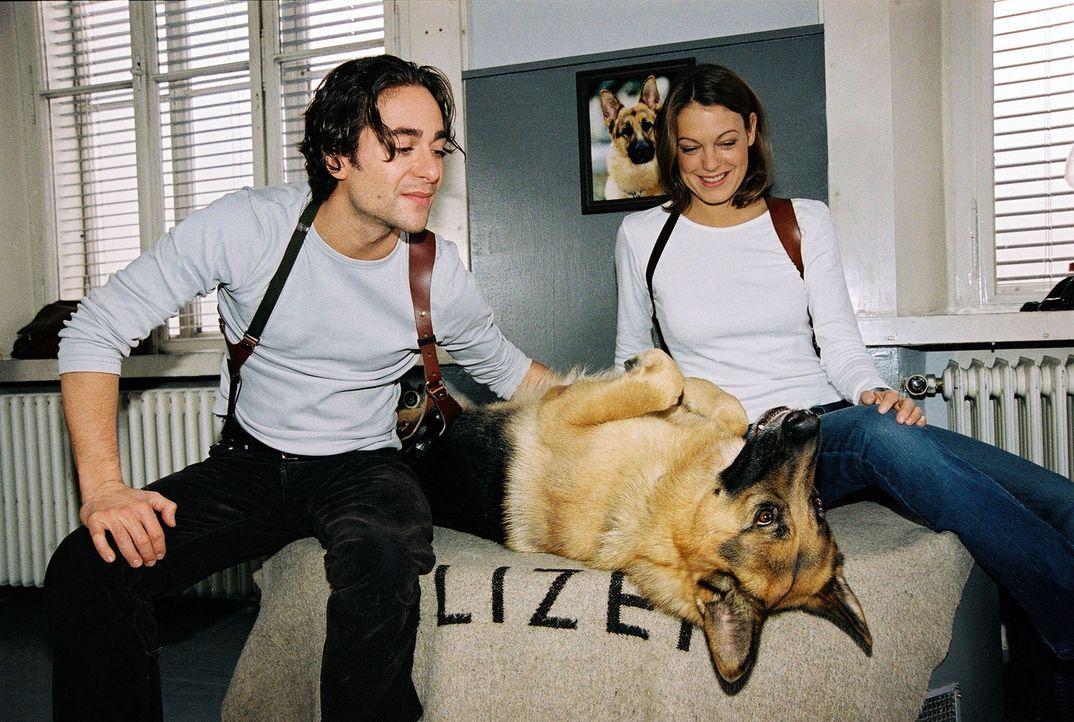 Rex stellt sich krank. Marc (Alexander Pschill, l.) und Niki (Elke Winkens, r.) durchschauen sein Spiel ... - Bildquelle: Sat.1