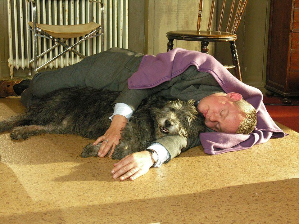 Hat nicht nur mit den Folgen einer durchzechten Nacht zu kämpfen: Doc Martin (Martin Clunes) ... - Bildquelle: BUFFALO PICTURES/ITV