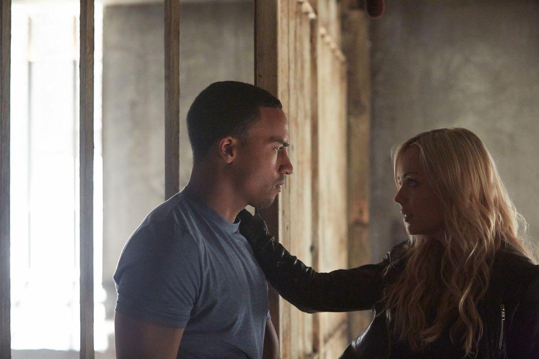 Arbeiten zusammen, gegen den Willen des Alphas: Elena (Laura Vandervoort, r.) und Logan (Michael Xavier, l.) ... - Bildquelle: 2014 She-Wolf Season 1 Productions Inc.
