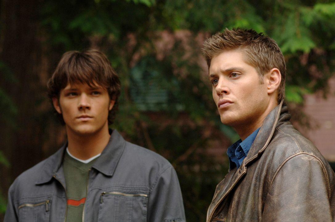 Wollen herausfinden, was in dem mysteriösem See steckt: Sam (Jared Padalecki, l.) und Dean (Jensen Ackles, r.) ... - Bildquelle: Warner Bros. Television