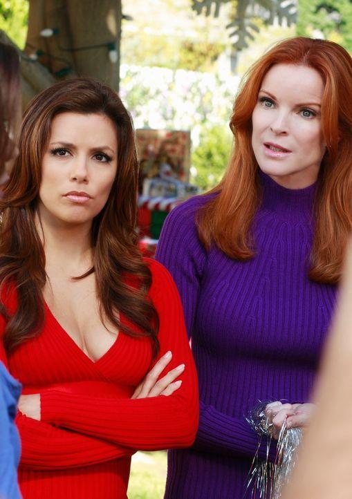Während die Freundschaft zwischen Lynette und Gabrielle (Eva Longoria, l.) in die Brüche zu gehen scheint, versuchen Orson und Bree (Marcia Cross, r... - Bildquelle: ABC Studios