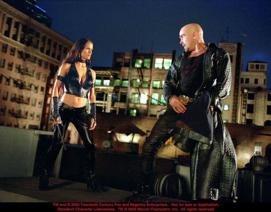 Der irische Killer Bullseye (Colin Farrell, r.) hat ein neues Opfer im Visier: Elektra (Jennifer Garner, l.) ... - Bildquelle: 20th Century Fox