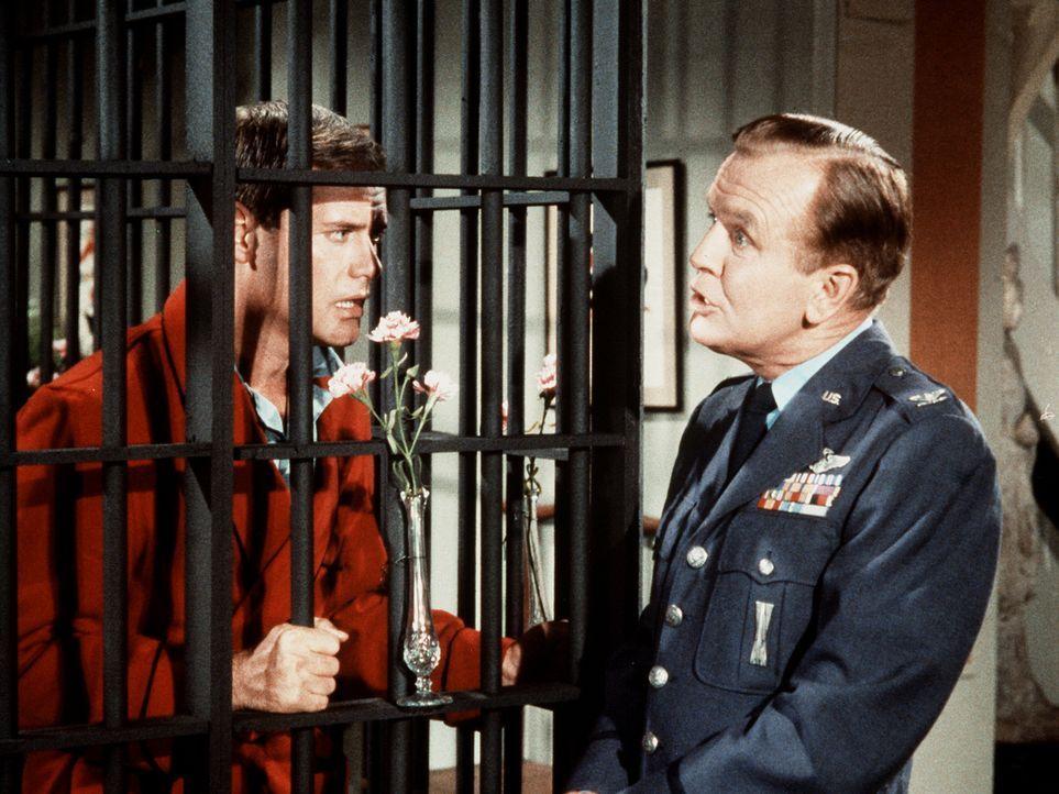Wie soll Tony (Larry Hagman, l.) Dr. Bellows (Hayden Rorke, r.) nur erklären, warum er in einen Käfig gesperrt ist? - Bildquelle: Columbia Pictures