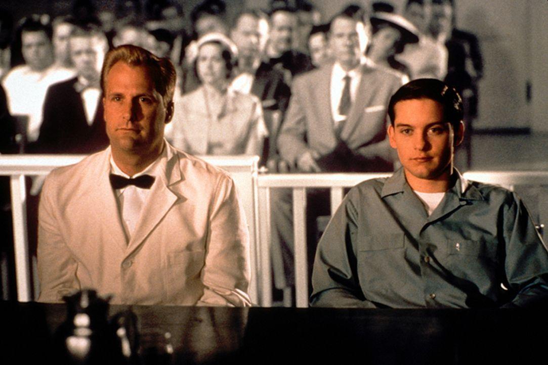 Bill (Jeff Daniels, l.); David (Tobey Maguire, r.) - Bildquelle: Warner Bros. Entertainment Inc.