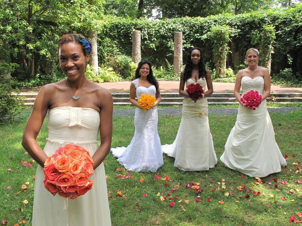 Wer feiert die perfekte Hochzeit? Alexis, Karen, Dashina oder Jessica? - Bildquelle: 2011 Discovery Communications, LLC