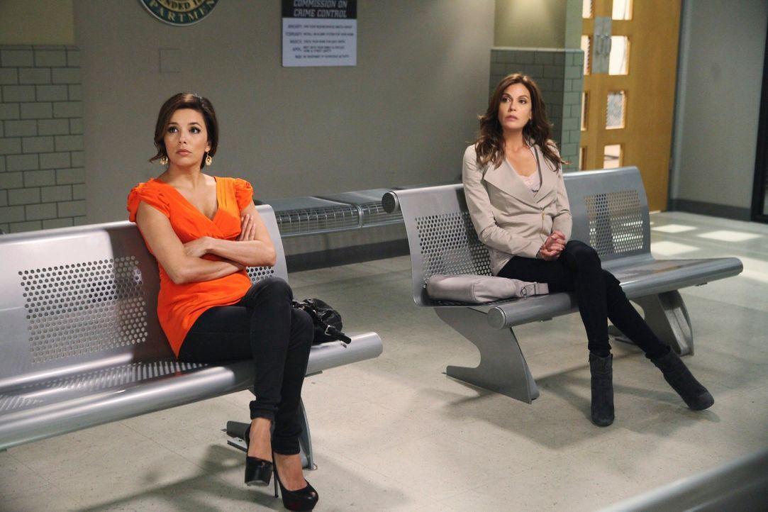 Gaby (Eva Longoria, l.), Susan (Teri Hatcher, r.) und Lynette geraten in Panik, als Chuck jede einzelne von ihnen zu einem Verhör über das Verschwin... - Bildquelle: ABC Studios