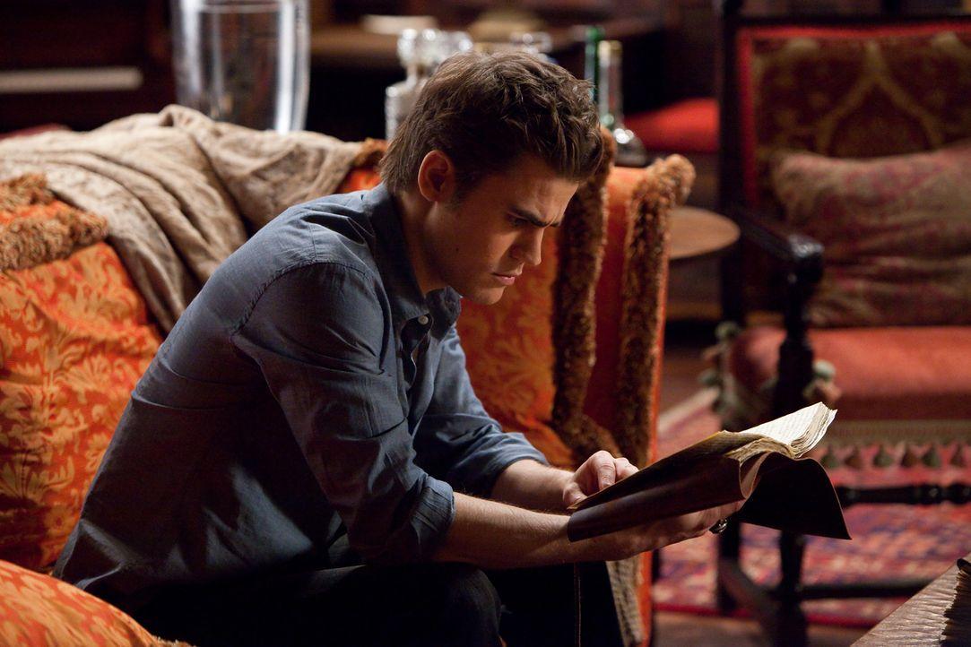 Wird Stefan (Paul Wesley) in diesem alten Buch eine Antwort auf seine Frage finden? - Bildquelle: Warner Brothers
