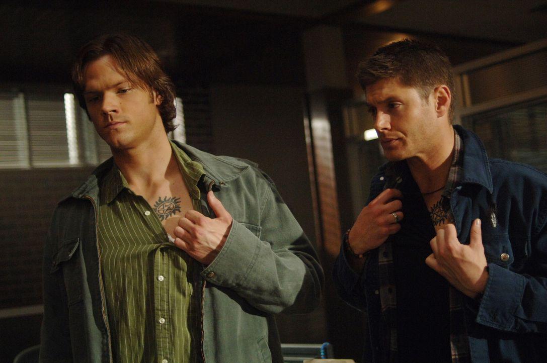 Sam (Jared Padalecki, l.) und Dean Winchester (Jensen Ackles, r.) brechen in Belas Apartment ein, um den magischen Colt zurückzubekommen. Aber Bela... - Bildquelle: Warner Bros. Television