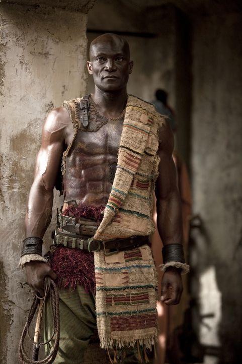 Bildet die neu erstandenen Sklaven von Batiatus aus: Drago (Peter Mensah) ... - Bildquelle: 2010 Starz Entertainment, LLC