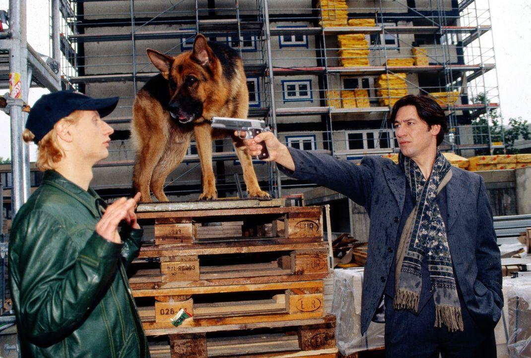 Kommissar Moser (Tobias Moretti, r.) und Rex stellen den Killer Kiprov (Victor Schefé, l.) ... - Bildquelle: Ali Schafler Sat.1