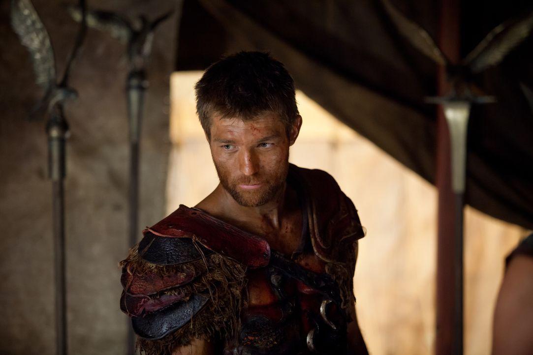 Will den Römern niemals verzeihen, was sie seiner Frau und ihm angetan haben: Spartacus (Liam McIntyre) ... - Bildquelle: 2013 Starz Entertainment, LLC.  All Rights Reserved