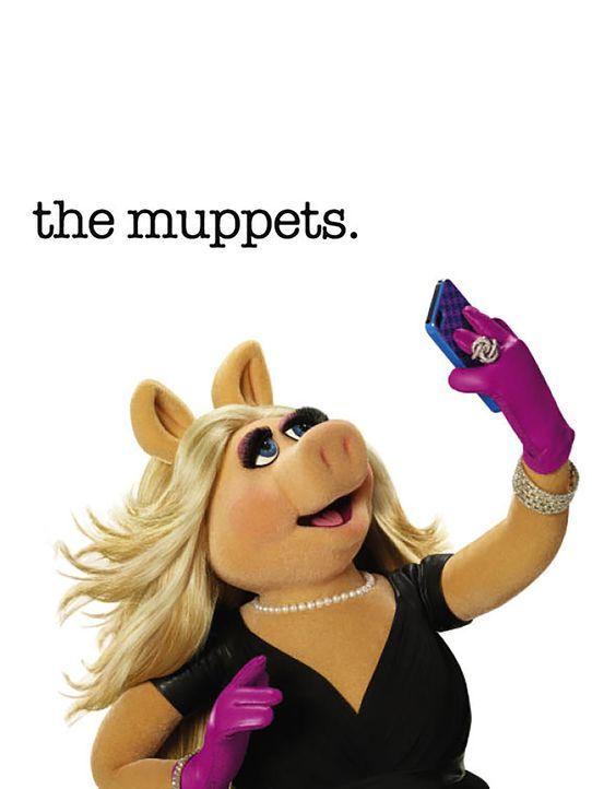 (1. Staffel) - Miss Piggy ist die ultimative Diva - und doch steckt unter ihren harten Schale ein weicher Kern ... - Bildquelle: ABC Studios