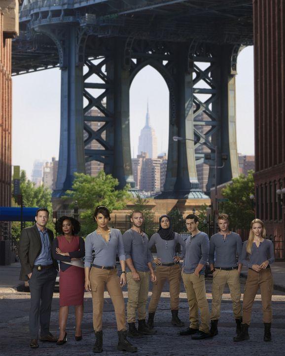 (1. Staffel) - Quantico: (v.l.n.r.) Liam O'Connor (Josh Hopkins), Miranda Shaw (Aunjanue Ellis), Alex Parrish (Priyanka Chopra), Ryan Booth (Jake Mc... - Bildquelle: 2015 ABC Studios