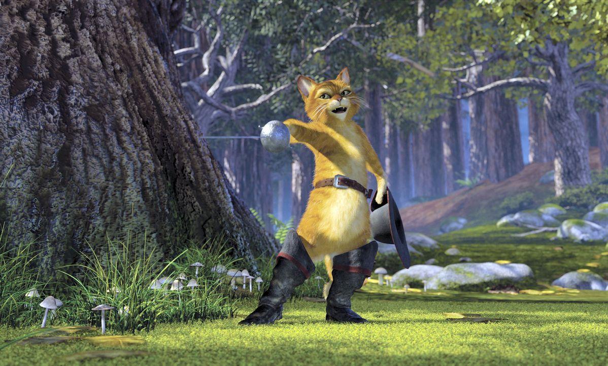 Wie Shrek schon bald befürchtet, sind Fionas Eltern nicht besonders von ihm angetan. Als das erste Dinner im handfesten Streit endet, beschließt der... - Bildquelle: DreamWorks SKG