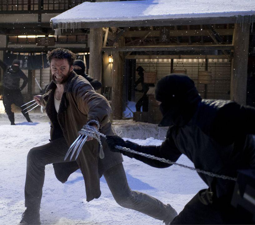 Schluss mit lustig: Wolverine (Hugh Jackman, l.) ... - Bildquelle: Ben Rothstein 2013 Twentieth Century Fox Film Corporation. All rights reserved.