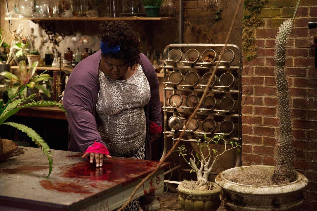 Queenie (Gabourey Sidibe) will das Verschwinden von Marie Laveau nicht hinnehmen und schreckt bei ihrer Suche vor nichts zurück ... - Bildquelle: 2013-2014 Fox and its related entities. All rights reserved.