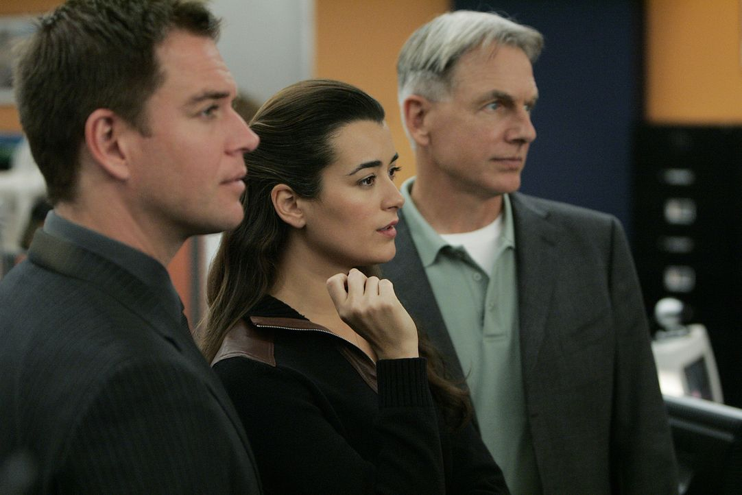 Versuchen einen neuen Fall zu lösen: Gibbs (Mark Harmon, r.), Tony (Michael Weatherly, l.) und Ziva (Cote de Pablo, M.) ... - Bildquelle: CBS Television