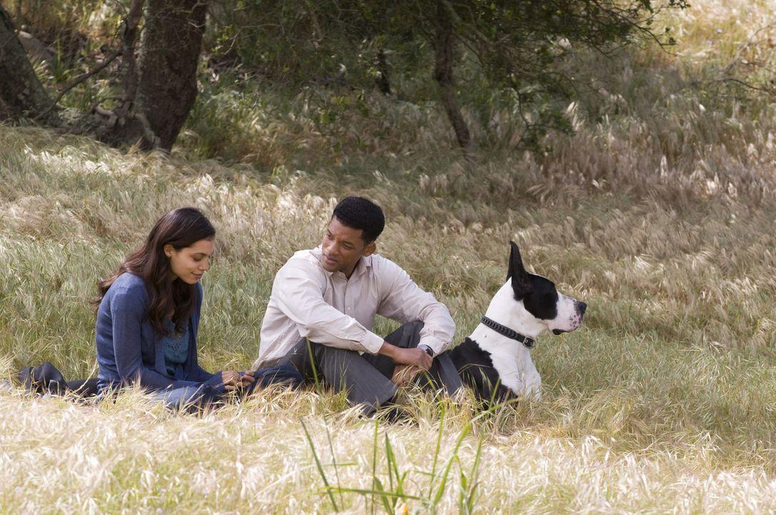 Nach und nach gelingt es Emily (Rosario Dawson, l.), Ben (Will Smith, r.) zu zeigen, wie schön das Leben sein kann. Allerdings ahnt sie nicht, dass... - Bildquelle: 2008 Columbia Pictures Industries, Inc. and Beverly Blvd LLC. All Rights Reserved.