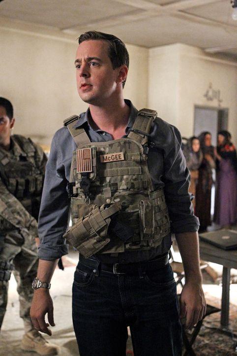 Ein neuer Fall führt Gibbs und McGee (Sean Murray) nach Afghanistan ... - Bildquelle: CBS Television