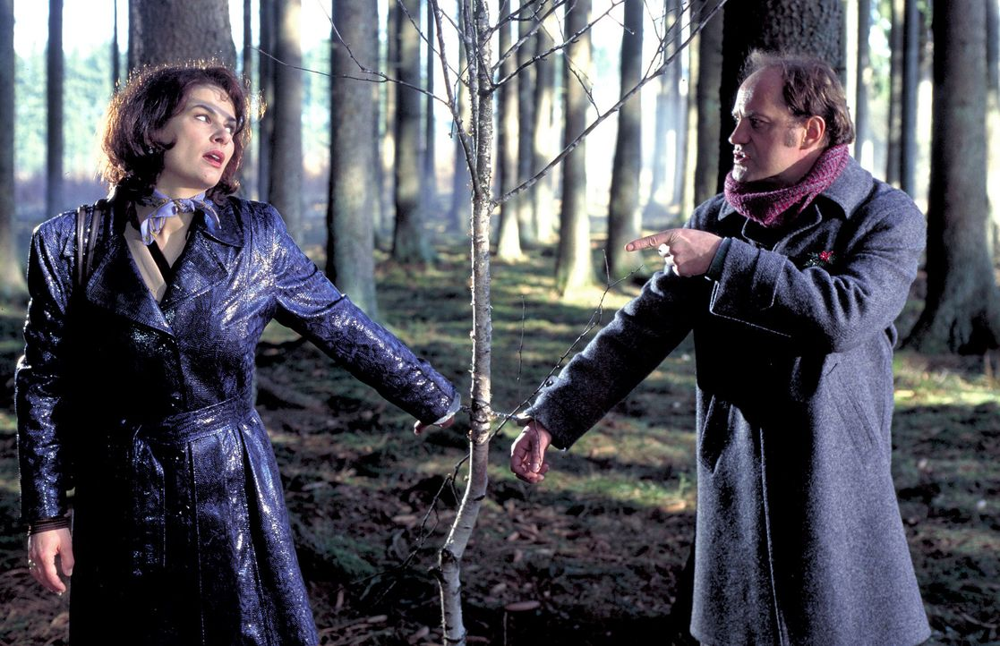 Die beiden haben nichts, aber auch gar nichts gemeinsam: Der ewige Verlierer und  Handlungsreisende Mauser (Uwe Ochsenknecht, r.) liebt das Weihnach... - Bildquelle: ProSieben
