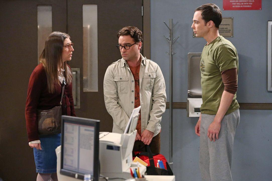 Leonard (Johnny Galecki, M.) und Amy (Mayim Bialik, l.) machen sich auf den Weg nach Arizona, um einen gestrandeten und ausgeraubten Sheldon (Jim Pa... - Bildquelle: Warner Brothers