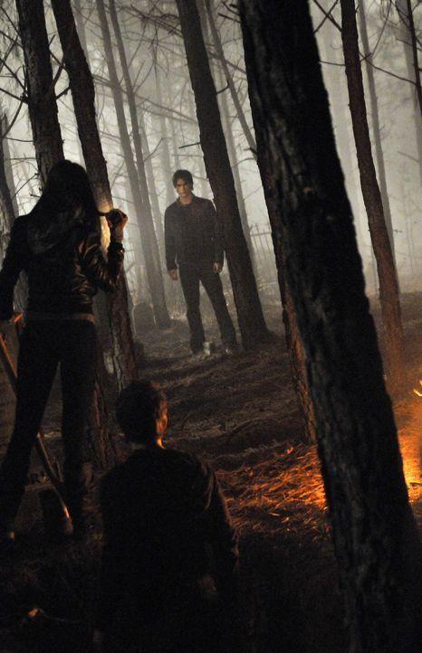 Auch Damon (Ian Somerhalder, r.) ist an dem Buch interessiert, da es der Schlüssel zur Gruft ist. Elena (Nina Dobrev, l.) und Stefan (Paul Wesley, M... - Bildquelle: Warner Bros. Television