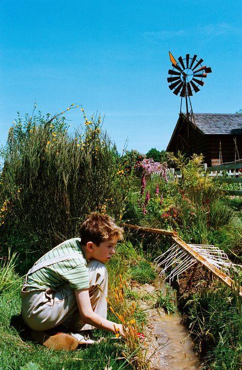Um das Grundstück seiner Großmutter vor einem fiesen Immobilienhai zu retten, muss Arthur (Freddie Highmore) den geheimen Schatz seines vor Jahren v... - Bildquelle: TOBIS Film