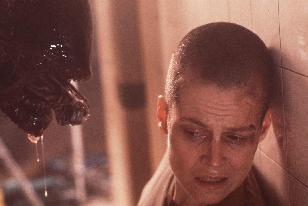 Verzweifelt nimmt Ellen (Sigourney Weaver) den schier ausichtlosen Kampf gegen das schleimige Alien auf . - Bildquelle: 20th Century Fox of Germany