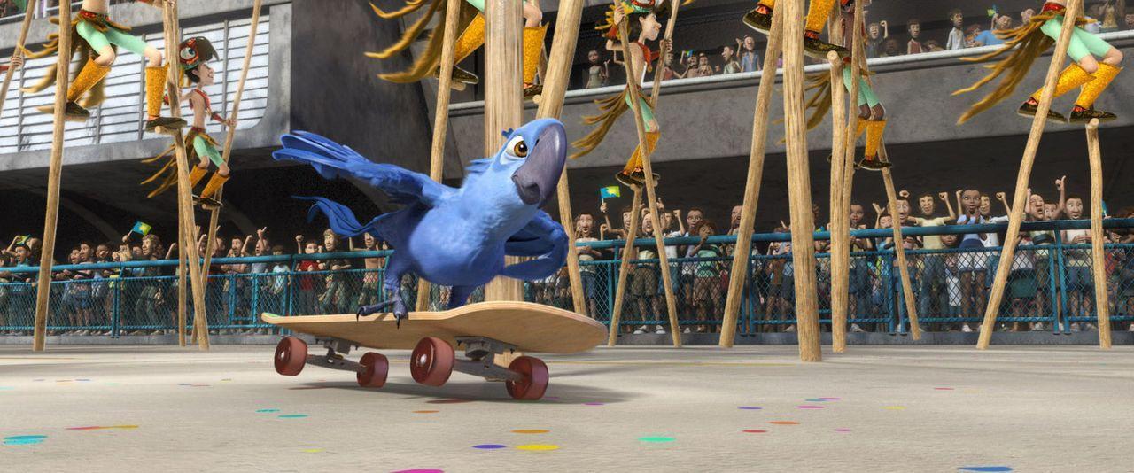 Raus aus dem Käfig - rein ins Abenteuer: Blu ... - Bildquelle: Blue Sky Studios 2011 Twentieth Century Fox Film Corporation. All rights reserved.