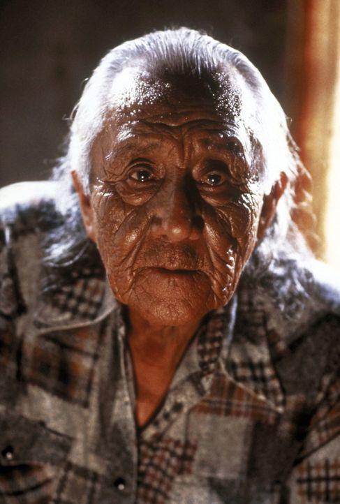 Der alte Medizinmann Sam Reaches (Ted Chief Thin Elk) versucht, dem FBI-Agenten Levoi die Bräuche und Sitten der Indianer näher zu bringen ... - Bildquelle: TriStar Pictures