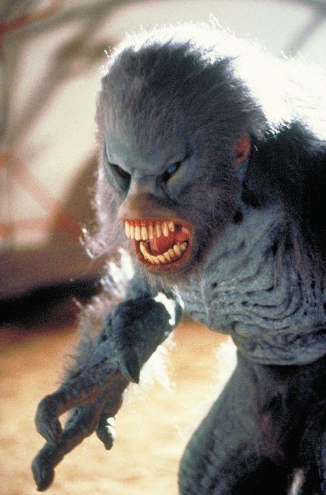 Das außerirdische Leben bringt enorm schlagwütige Alien-Affen hervor ... - Bildquelle: 2003 Sony Pictures Television International