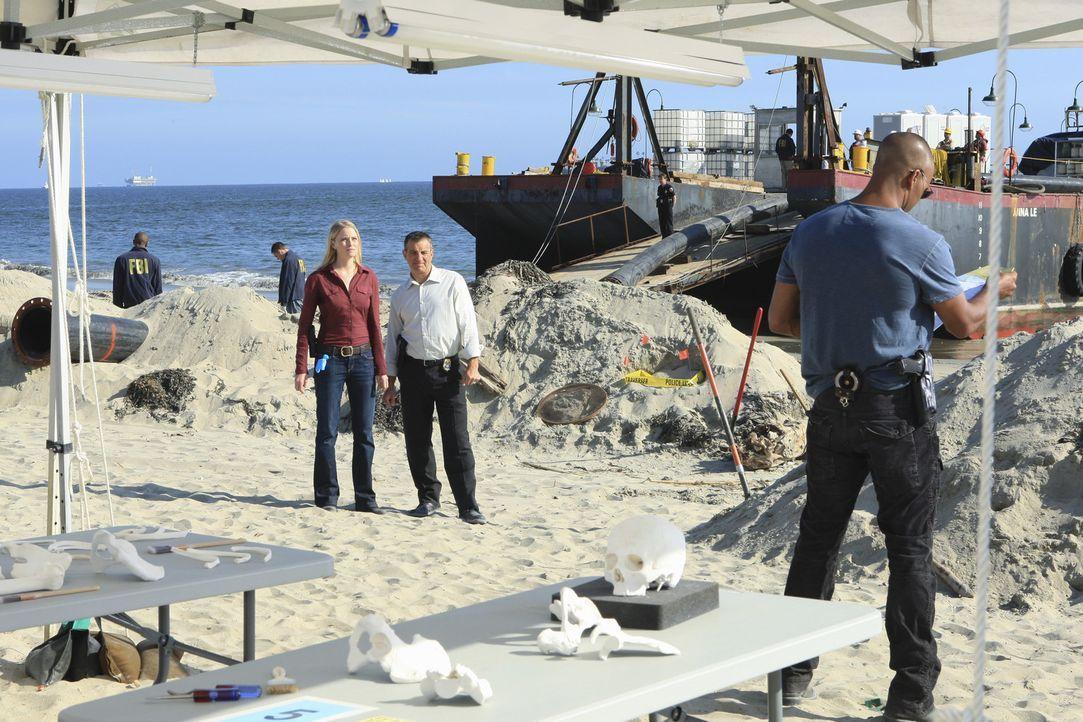 Als bei Pumparbeiten in Florida Skelettstücke an Land gespült werden und sich daraus richtiger Unterwasserfriedhof ergibt, wird das BAU-Team um Mo... - Bildquelle: ABC Studios