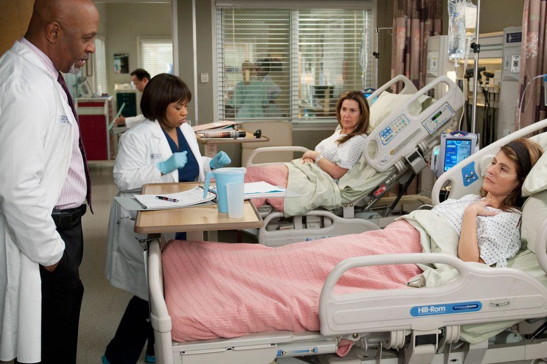 Webber (James Pickens, Jr., l.) und Bailey (Chandra Wilson, 2.v.l.) kümmern sich um ein zänkisches Geschwisterpaar (Nia Vardalos, r. und Peri Gilpin... - Bildquelle: ABC Studios