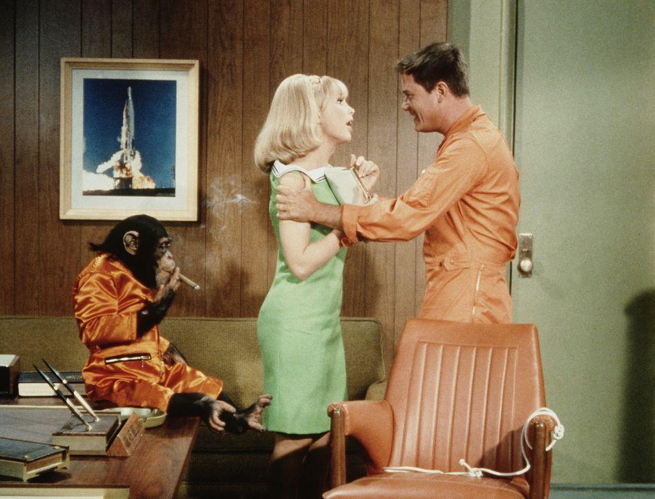 Jeannie (Barbara Eden, l.) verspricht Tony (Larry Hagman, r.), sich nie wieder in seine Angelegenheiten einzumischen, während Sam genüsslich seine w... - Bildquelle: Columbia Pictures