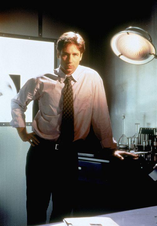 (2. Staffel) - Bei den so genannten X-Akten handelt es sich um Fälle, in denen paranormale Phänomene eine Rolle spielen. FBI-Agent Fox Mulder (David... - Bildquelle: TM +   Twentieth Century Fox Film Corporation. All Rights Reserved.