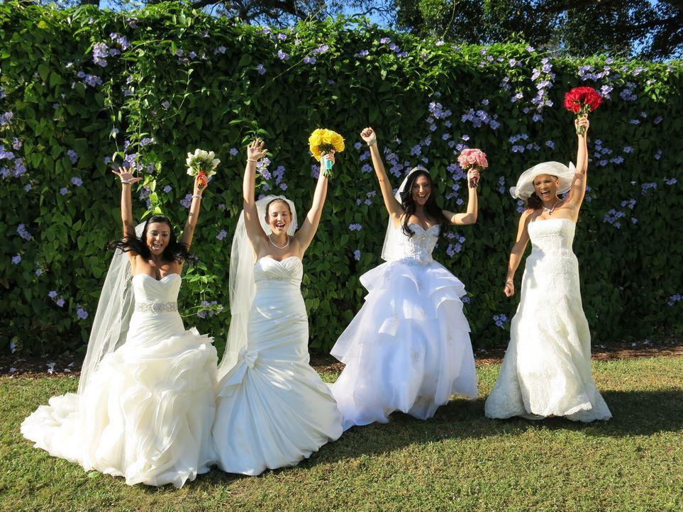 Jede der vier Bräute glaubt, die perfekte Hochzeit organisiert zu haben, doch wer wird auch die Konkurrenz davon überzeugen können: Thais (l.), Rebe... - Bildquelle: Richard Vagg DCL
