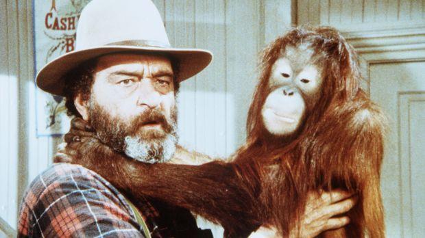 Edwards (Victor French) hat das Orang-Utan-Baby Blanche in Olesons Laden gefu...