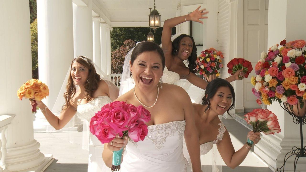Jede der vier Bräute glaubt, die perfekte Hochzeit organisiert zu haben, doch wer wird auch die Konkurrenz davon überzeugen können: Shelly (l.), Chr... - Bildquelle: Richard Vagg DCL