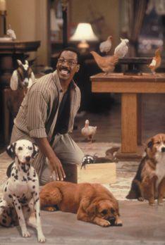 Dr. Dolittle - Tierarzt Dr. Dolittle (Eddie Murphy) freundet sich in seiner P...