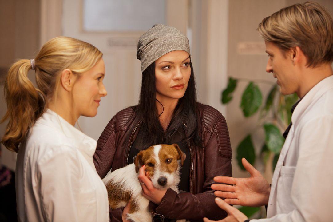 """Als Tamara (Kristina Dörfer, M.) beinahe einen kleinen Hund anfährt, verlangt sie von David (Max von Pufendorf, r.), dass er """"ihren"""" Hund vorsorglic... - Bildquelle: Conny Klein SAT.1"""