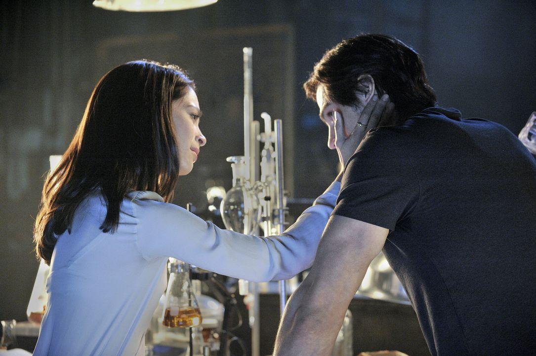 """Fühlen sich von Anfang an zueinander hingezogen, wissen aber, dass eine Verbindung zwischen ihnen extrem gefährlich werden könnte: Catherine """"Cat"""" C... - Bildquelle: 2012 The CW Network, LLC. All rights reserved."""