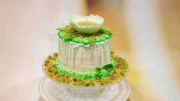 """Ebrus """"Spinat Kiwi Torte"""""""