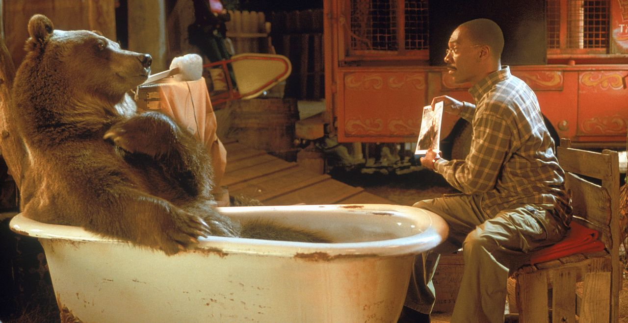 Lektion in Körperpflege: Dr. Dolittle (Eddie Murphy) zeigt seinem Freund, dem Bären Archie, wie man sauber bleibt ... - Bildquelle: 1998 Twentieth Century Fox Film Corporation. All rights reserved.