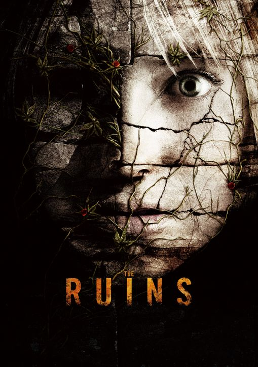 Ruinen - Plakatmotiv - Bildquelle: 2008 DreamWorks LLC. All Rights Reserved.l
