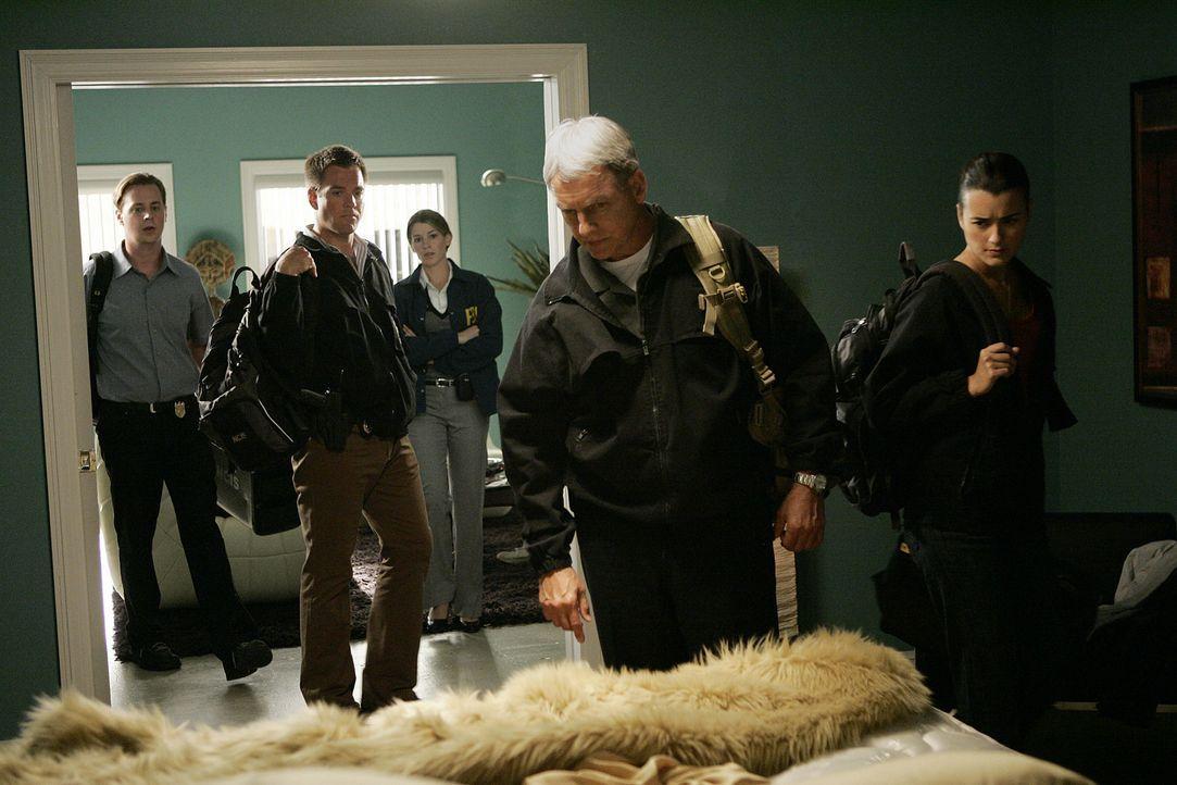Gemeinsam versuchen sie einen Mord aufzuklären: Gibbs (Mark Harmon, 2.v.r.), Ziva (Cote de Pablo, r.), Tony (Michael Weatherly, 2.v.l.), McGee (Sea... - Bildquelle: CBS Television