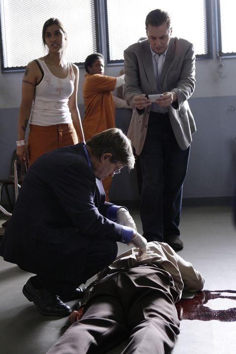 Ein Gefängniswärter wurde umgebracht. McGee (Sean Murray, r.) und Ducky (David McCallum, vorne l.) untersuchen die Leiche, um den Mörder ausfindi... - Bildquelle: CBS Television