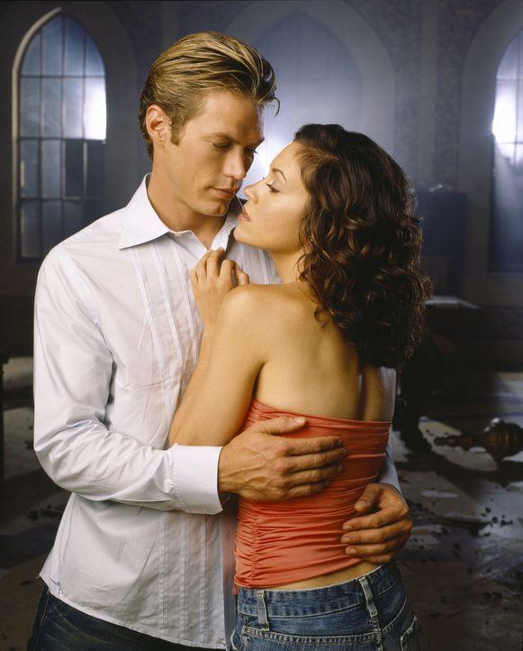(8. Staffel) - Sind sie füreinander bestimmt?: Pheobe (Alyssa Milano, r.) und Dex Lawson (Jason Lewis, l.) ... - Bildquelle: Paramount Pictures
