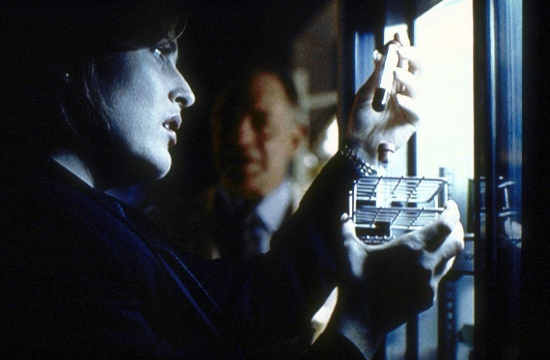 Scully (Gillian Anderson, l.) will die Blutproben von Direktor Skinner untersuchen. - Bildquelle: TM +   2000 Twentieth Century Fox Film Corporation. All Rights Reserved.