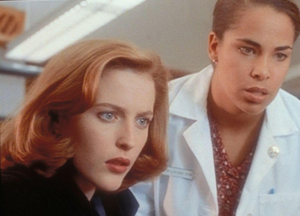 Scully (Gillian Anderson, l.) und eine Krankenschwester betrachten fassungslos die Wunden an den Händen eines 10-jährigen Jungen, die wie Kreuzigung... - Bildquelle: TM +   2000 Twentieth Century Fox Film Corporation. All Rights Reserved.